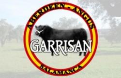 Angus Garrisan